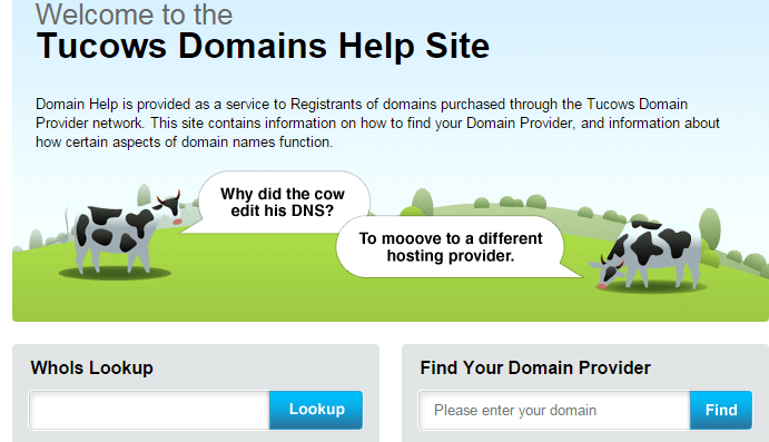 Domain Detail Finder